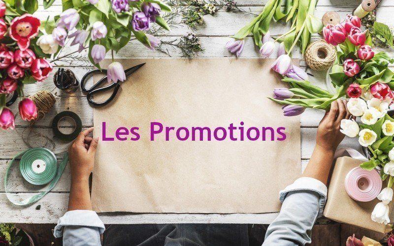 Les promotions de la boutique