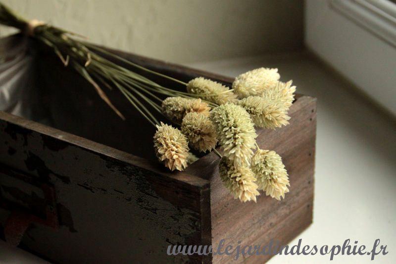 Art floral thème nature
