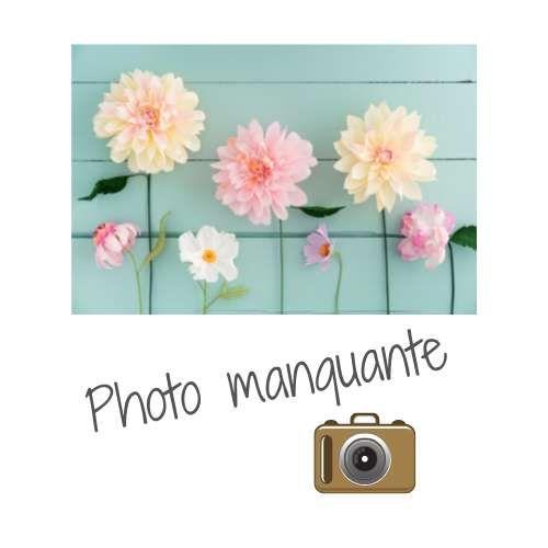 Composition florale fleurs préservées blanches et or