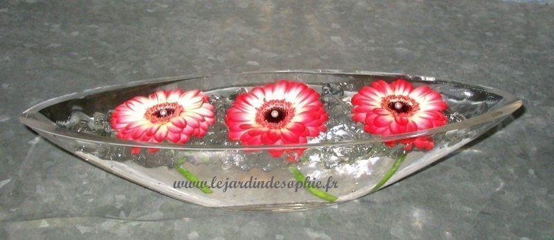 Créations dans du gel floral avec trois germinis