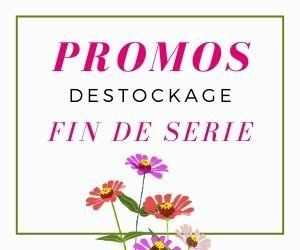 Promotions de la boutique